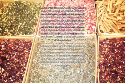 The Foodie Ketubah